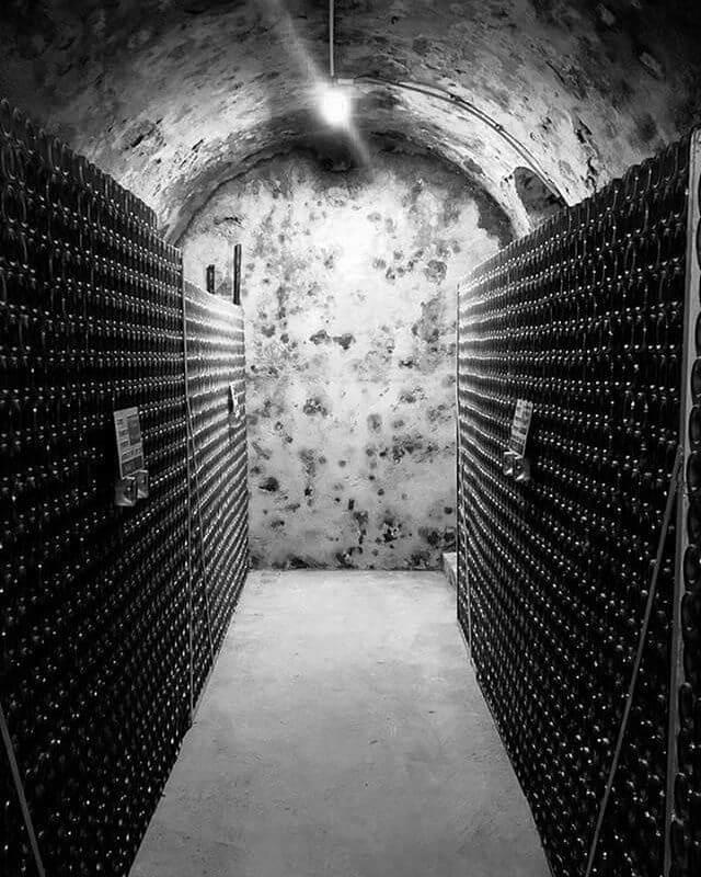 Champagne Didier Herbert pivnica