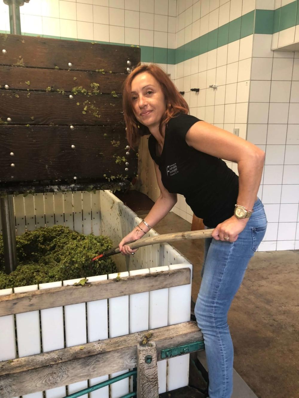 Champagne Varnier-Fanniere práca vo vinárni