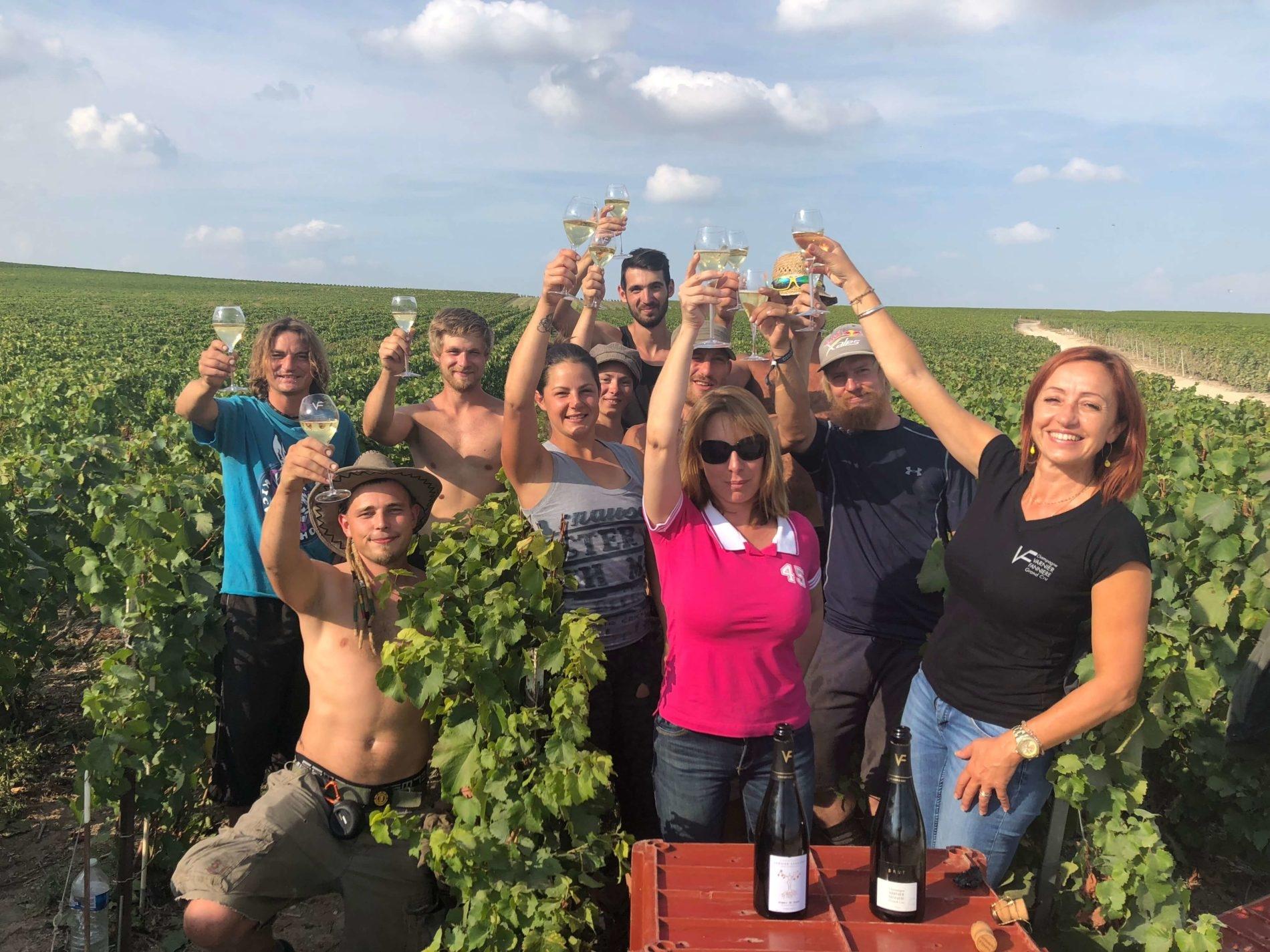 Champagne Varnier-Fanniere vinohrady